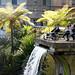 Jardim Tropical Monte Palace_4