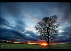 Last light last night..... (Digital Diary........) Tags: sunset sky tree canon landscape sigma 1020mm sthelens crank lastlight chrisconway goodlight billinge eos400d