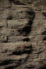 Merlin's Cave 03 (LygeiaLupin) Tags: ocean sea shells water rock dark still meer wasser cornwall stones structures steine cave kontrast lightandshadow tintagel hhle felsen muscheln lichtundschatten merlinscave