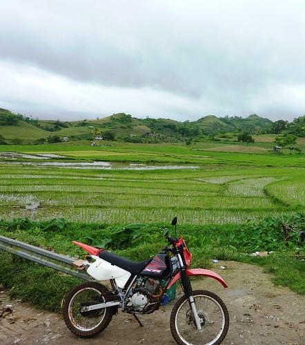 Negros-San Carlos-Bacolod (67)
