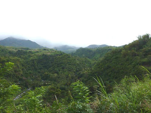 Negros -Bacolod-Savador-San Carlos (26)