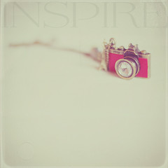 .If your actions inspire others to dream more, learn more, do more and become more, you are a leader.  ~John Quincy Adams~ (qqp) Tags: camera texture vintage square vintagecamera inspire fauxvintage kimklassen