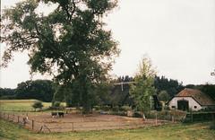 Deventer - Klarenbeek (ericderedelijkheid) Tags: deventer klarenbeek voigtlndercolorskopar35mmf25 voigtlnder bessar4m fujichromevelvia100