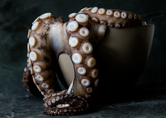 Octopus (ToriAndrewsPhotography) Tags: octopus billingsgate market london dish food photography andrews tori