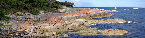 Panorama - Bicheno Foreshore-Red Granite Footway
