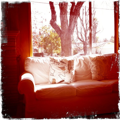 couch in winter