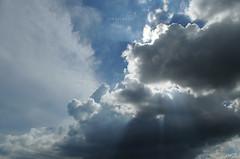 [043/365] Irradiance (Dodzki) Tags: nikon 365 february pcc 2011 cebusugbo d5000 proj3652011 sooccaption