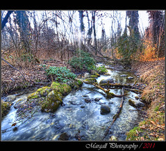 The slow river in the forest - HDR - River park - Cuneo - Italy (Margall photography) Tags: park wood winter italy parco sun water forest canon river moss long italia sigma piemonte exposition filter rays cuneo 1020 hdr 30d exp marumi nd8 fluviale