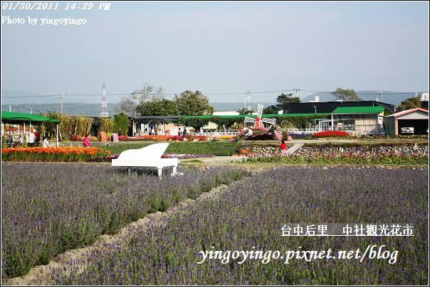台中后里_中社光觀花市20110130_I6211