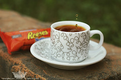 "Coffee Drops ! (Queen333"" ) Tags: macro green coffee canon drops chocolate queen arabic 100 28  reeses              ghadah"