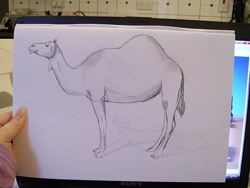 sketch closeup