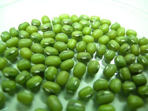 mung bean หมอนเปลือกถั่วเขียว