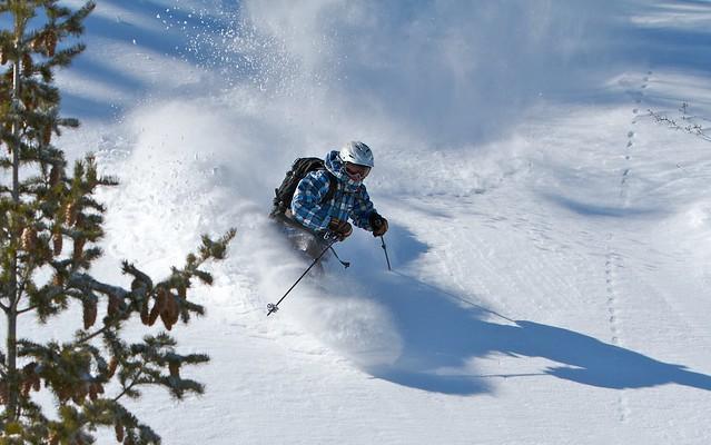 Powder Mountain Teleskier