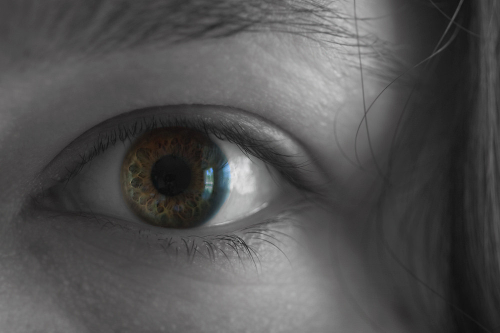 Color 3/31:  Iris