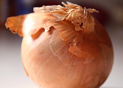 Onion in Sun