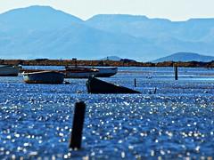 Djame la barca, Barquero (Jesus_l) Tags: espaa mar agua europa barca murcia sanpedrodelpinatar jesusl