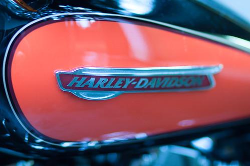 My Harley