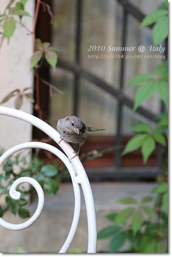 2010-08-16 10-47-03 Day9 Venice_0046 f