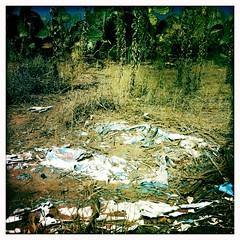 Plastic Debris by Jason Willis