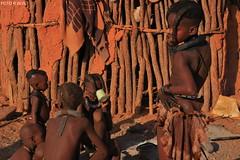1086=POBLADO HIMBA, EPUPA, NAM. (rweisswald) Tags: africa people african culture tribal safari afrika tribe ethnic namibia tribo himba afrique ethnology tribu namibie tribus ethnie