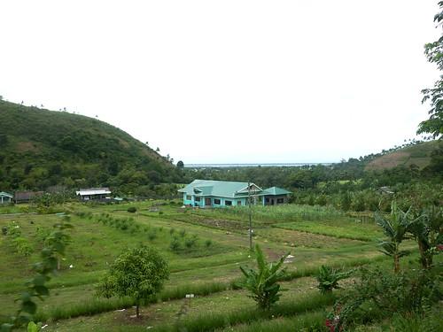 Negros -Bacolod-Savador-San Carlos (130)