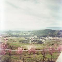 (SpencerU) Tags: california people field 35mm landscape lomo lomography hills dianamini