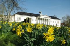 Kulturzentrum PFL im Bltenmeer (ehemals Peter-Friedrich-Ludwig Hospital) (perspective-OL) Tags: oldenburg frhling niedersachsen pfl wildenloh