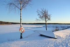 DSC_0510 (Peter Bjoerklund) Tags: vinter ute vnern