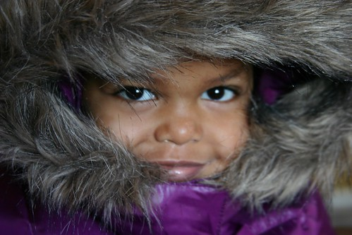 furry hood love