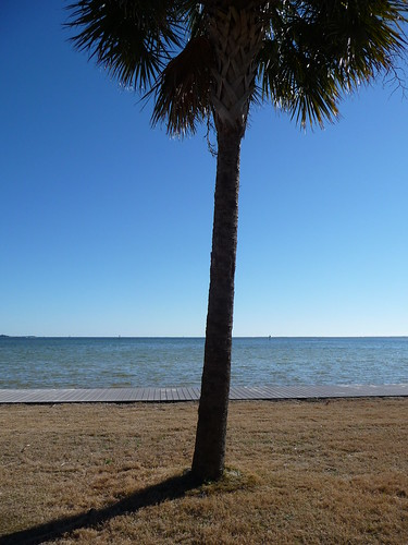 Pensacola Bay from Sanders Beach Park