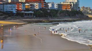 Cronulla Beach life