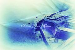 Vertigo... (Aikaterini Koutsi Marouda aka kotsifi) Tags: sanfrancisco trip blue sea usa cold building texture film america movie place perspective indigo viewfromabove pentaxoptiox kotsifi aikaterinikoutsimarouda