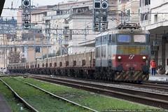 E655-234 (Raffaele Russo (LeleD445)) Tags: roma train merci cargo mrs rapido speciale terni ostiense civitavecchia caimano e655 tranitalia