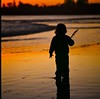#007112 - toddler at sunset on the beach, santa cruz, january 2011. (Jeff Merlet Photography) Tags: california family sunset orange usa santacruz black color 120 6x6 film beach mediumformat square kid toddler published kodak feather wave slide s hasselblad shore mf 100 12 500 ektachrome e6 planar shorebreak 500cm sonnar carre e100g 250mm ncps scphoto 007112 r0071 january2011 sonnar250 journeyofanorcalfamily jeffmerletphotography jeffmerlet photojeffmerletcom carlzeiss250mmf56sonnar
