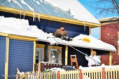 Snow, snow, snow 5 / De la neige à ne plus savoir qu'en faire (guysamsonphoto) Tags: winter snow hiver neige victoriaville nikkor70300vr nikond7000 guysamson potd:country=fr