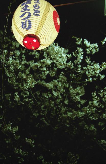 熊本城の提灯のフリー写真素材