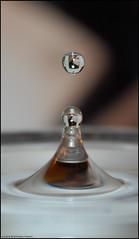 io... nell'acqua! (L *) Tags: portrait water nikon drop reflect acqua viso riflesso goccia gocce d60 volto 1855vr