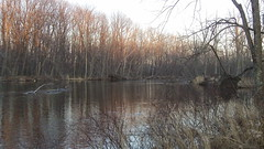 Kalamazoo River near Albion, Michigan (Dave Garvin) Tags: river michigan albion kalamzoo