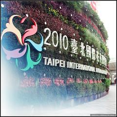 68580007 (My Memory of Happiness ) Tags: life taiwan hasselblad taipei   cf  80mm 500cm