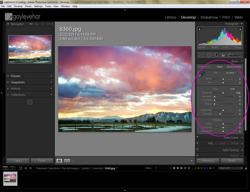 Lightroom Beginner 1