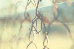 rusty fence (life stories photography) Tags: fence rust friday xoxo yellowspringsohio 752 happyfridayeveryone