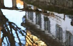 della serie VANITA' SUI NAVIGLI ... n. 1 di 2 (Maria Grazia Marrulli) Tags: dellaserievanita'suinavigli canali acqua riflessi reflections reflet architettura palazzi finestre windows inquinamento alberi trees cielo strada diagonale surreale obliquamente navigli milano lombardia italia obliquemind circolomicromosso gruppomilanocfop viaggio travel vojage