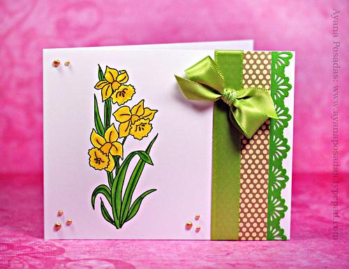 Daffodil Flowers (2)