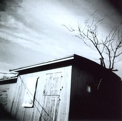 Wood Shed (Monica Forss) Tags: bw 120 film analog mediumformat skne sweden toycamera analogue malm holga120n plasticlens lomo100bw
