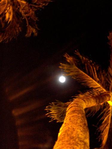 Eclipse 21 dIciembre 2010 R