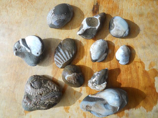 rocks 039
