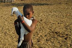 Namibia: Himba boy with goat (Euphemia G) Tags: africa african culture tribal safari afrika tribe ethnic namibia tribo himba afrique ethnology tribu namibie tribus ethnie