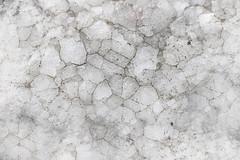 Texture  38