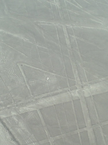 20100315047