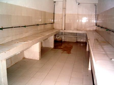 Photo of women's shower room